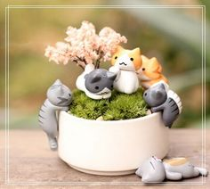 Free Free Free plus shipping Miniature Fairy Garden Decorations Kawaii Cartoon Mini Cat Crafts Micro Landscape Home Decoration Accessories For Home Cat Crafts, Home Crafts, Arts And Crafts, Animal Crafts, Miniature Crafts, Miniature Fairy Gardens, Miniature Figurines, Miniature Food, Cat Flowers