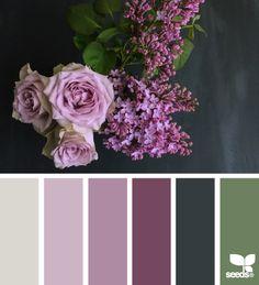 flora palette, by design seeds Colour Pallette, Color Palate, Colour Schemes, Color Combos, Purple Palette, Decoration Palette, Decoration Entree, Decoration Design, Design Seeds