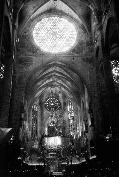 christmas.y dark cathedral