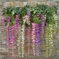 All the colours of Wisteria Hanging Garland, Hanging Flowers, Wedding Plants, Wedding Flowers, Flower Decorations, Wedding Decorations, Wedding Ideas, Wisteria Plant, Vine Trellis