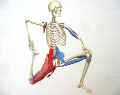 """Permission to mobilize. Posted by Rob Sawyer in Mobility, Movement, Neurokinetic Therapy, Pain On August 29, 2014 """"If you have tried stretching, mobilising, foam rolling, lacrosse ball, self torture devices, body work, manipulation, contortion, voodoo, and are not getting the results you desire, perhaps its time to try something else?"""""""