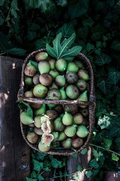 24 Ideas fruit garden photography food styling for 2019 Fruit Photography, Food Photography Styling, Fruit And Veg, Fresh Fruit, Fresh Figs, Food Styling, Terra Verde, Art Et Design, Belle Photo