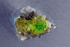 Green Mountain, Ascension Island, New York Washington, Ocean Current, Port Au Prince, Marine Ecosystem, Guatemala City, San Salvador, Charles Darwin