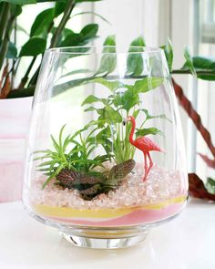 Terrariums are a great way to bring a little green to your indoor space, but why not add more colors of the rainbow? By adding colored sand to the base of the terrarium, you can create even more visual appeal to the bottom layers. Terrarium Figurines, Glass Terrarium, Terrarium Ideas, Sand Pictures, Sand Glass, Diy Projects Cans, Colored Sand, Crushed Glass, Vase Fillers