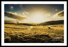 Sunset Framed Print featuring the photograph Fields Of Natural Light by Jorgo Photography - Wall Art Gallery