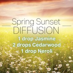 Diffusion - use Blend of Jasmine and Blend of Neroli for a cheaper blend.