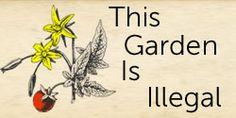 7 garden weed killers