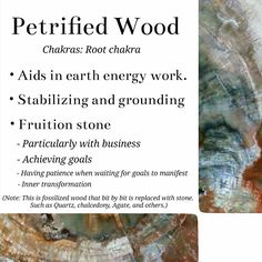 Petrified Wood crystal meaning