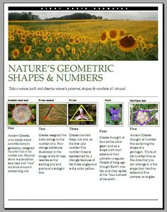 geometry in nature free print