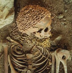 Upper Palaeolithic burial 24,000 yrs old with skull cap made from hundreds of snail shells, Arene Candide, Italy.