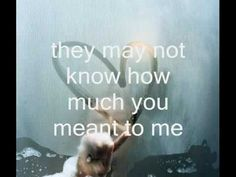 I cried for you - Katie Melua ( perfect mood for My Melancholic Diary - Lisa's song to Tertius )