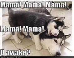 Mama Mama Mama you awake - Sulayman woke me up to say HI once the went back to sleep