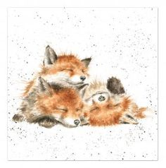 The Afternoon Nap - Wrendale Designs by Hannah Dale, Animal Paintings, Animal Drawings, Art Drawings, Horse Drawings, Mini Paintings, Fox Drawing, Painting & Drawing, Fox Painting, Watercolor Animals