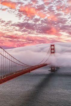 Rollling Fog #SF