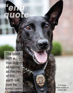 The bond with a true dog is as lasting as the ties of this earth will ever be. ~ Konrad Lorenz