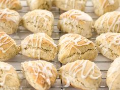 These cute little lemon poppy seed two-bite scones are soft and sweet with a deliciously tart lemon glaze. Lemon Poppy Seed Scones, Lemon Scones, Lemon Biscotti, Brunch Recipes, Breakfast Recipes, Dinner Recipes, Scone Recipes, Breakfast Ideas, Bread Recipes