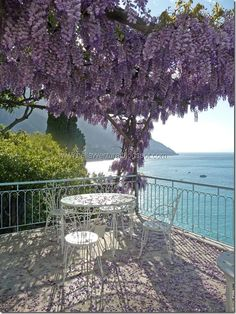 Positano, lovely and wysteria is one of my favorite blooms. Positano, lovely and wysteria is one of my favorite blooms. Landscape Design, Garden Design, Beautiful Places, Beautiful Pictures, Travel Aesthetic, Dream Garden, Dream Vacations, Beautiful Gardens, Places To Travel