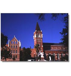 University of The Incarnate Word - My mom's alma mater and my current school! Working on the Bachelor's degree.