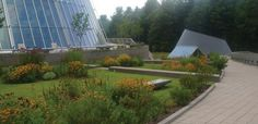 Green Roofs, Garden Roofs, Waterproofing, Monolithic Membrane 6125 - American Hydrotech