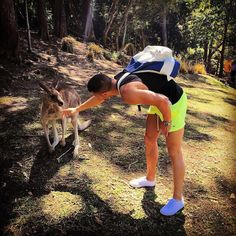 #currumbinwildlifesanctuary #spring #ozzie #kangaroo #kangaroos #australia #aussie #animal #wild #life #qld #queensland #cute #goldcoast #moments by vass9 http://ift.tt/1X9mXhV