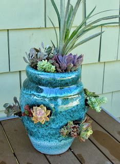 Succulent tutorial - succulents in a strawberry pot