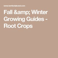 Fall & Winter Growing Guides - Root Crops