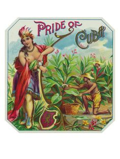 Pride of Cuba Brand Cigar Box Label