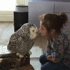 I'll peck ya mate! : aww