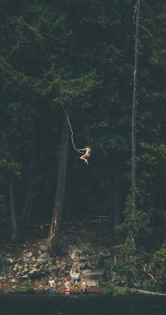 Lake Pictures Discover Photo of the Day: Whistler Rope Swing wanderlust exploring discover expedition adventure backpacker nature into the wild trees bungee Adventure Awaits, Adventure Travel, Adventure Holiday, Nature Adventure, Adventure Photos, Adventure Aesthetic, Life Adventure, Oh The Places You'll Go, Places To Visit