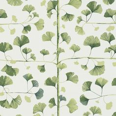 Fourth large image of Ginkgo Green