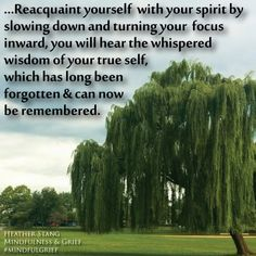 As you reacquaint yourself with your spirit by slowing down and turning your focus inward, you will hear the whispered wisdom of your true self, which has long been forgotten and can now be remembered. | Grief Quotes | http://MindfulnessAndGrief.com