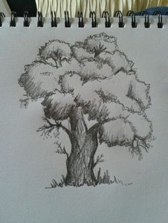Tree Drawing & Painting Ideas · Brighter Craft Source by helenephung. Tree Drawings Pencil, Cool Art Drawings, Art Drawings Sketches, Tree Pencil Sketch, Pencil Sketching, Pencil Drawing Tutorials, Landscape Sketch, Landscape Drawings, Landscape Art
