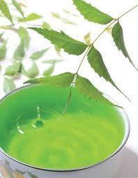 Efectividad del Neem - Para qué puedo usar neem - Herbal de Chiapas