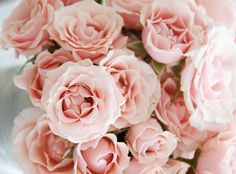 Sposarsi in rosa cipria
