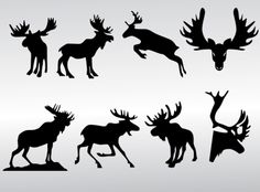 free profile moose graphic - Google Search