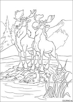 moose coloring pages - Google Search