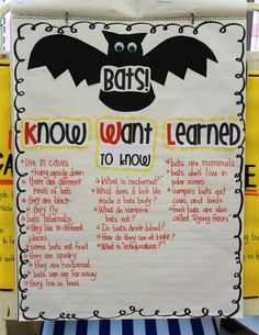 Bat KWL Chart for the Classroom: