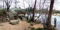 Rappahannock River Island, Fredericksburg, VA - 4/07