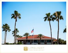 #LimelightPhotography #wedding #day #love #florida #belleair #countryclub #marriage #palmtrees #beautiful #day #vacation