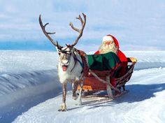 Papai Noel / Pai Natal & Segredos das renas - Lapônia na Finlândia - Cír...