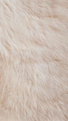Imagem de wallpaper, fur, and background Wallpaper Fur, Tumblr Wallpaper, Screen Wallpaper, Pattern Wallpaper, Wallpaper Backgrounds, Iphone Wallpapers, Iphone Backgrounds, Wallpaper For Your Phone, Pretty Wallpapers