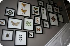 gallery wall...did mine down the stairway. Cut out paper and tissue paper the sizes of the frames. Then was able to tape them and move them around without a bazillion holes in the wall. I have to say, I love how it turned out!!