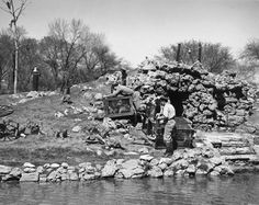 Rhesus Monkeys Move to Summer Home | Photograph | Wisconsin Historical Society