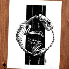 """Halloween album: My animal skulls and skeletons fountain pen and Sumi ink on paper 12"""" x 16"""". http://ift.tt/2z0A9ld"""
