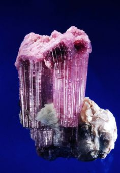 Tourmaline var. Elbaite - Russia <br>Photo  Michael Leybov