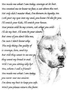 """Pitbulls(I love mine !!!)please stop being cruel to this breed of dog . I think it's terrible that we are   horrible  to the things that we understand the least . I have pit bull boxer mix, she is the sweetest thing she will sleep in my bed with me and cuddle with me. Shes so loving. I love my dog i hope one day u will all see the these so called """"monsters"""" r our faults. Someone, probably, purposely hurt this animal and the chain of events that created the """"monster"""" started there! I hope u see!!"""
