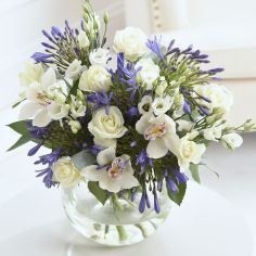 White and Blue Orchid Bouquet from Next