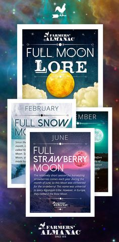 The Farmers' Almanac Store has planners and calendars for your entire year plus a unique collection of gifts. Full Moon Names, Sturgeon Moon, Cold Moon, Strawberry Moons, Farmers Almanac, Pink Moon, Book Organization, Man On The Moon, Beautiful Moon