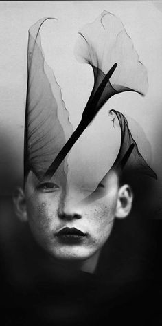 Antonio Mora: Double exposure portraits by Spanish-based artist Antonio Mora (a.k.a. Mylovt) blend human and nature worlds into surreal hybrid artworks