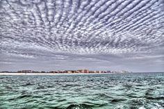shore veiw